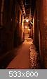 Clicca sull'immagine per ingrandirla  Nome: Notte in Contrada.jpg Visite: 888 Dimensione:  52,2 KB ID: 247
